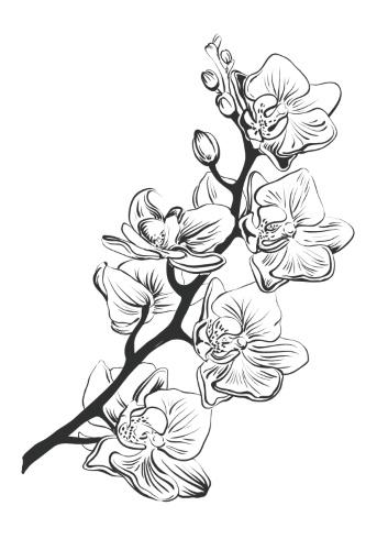 Картинка для выжигания по дереву Цветы