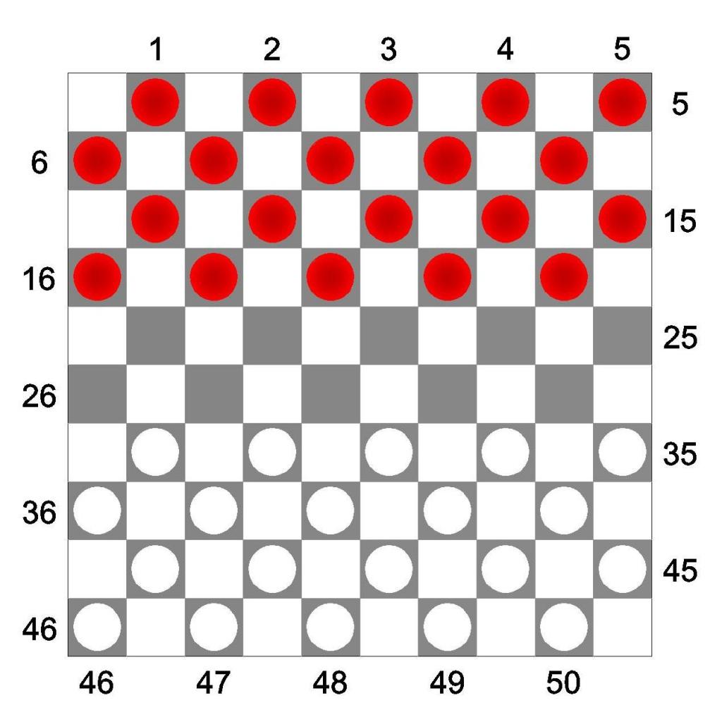 Международные шашки, расстановка на поле
